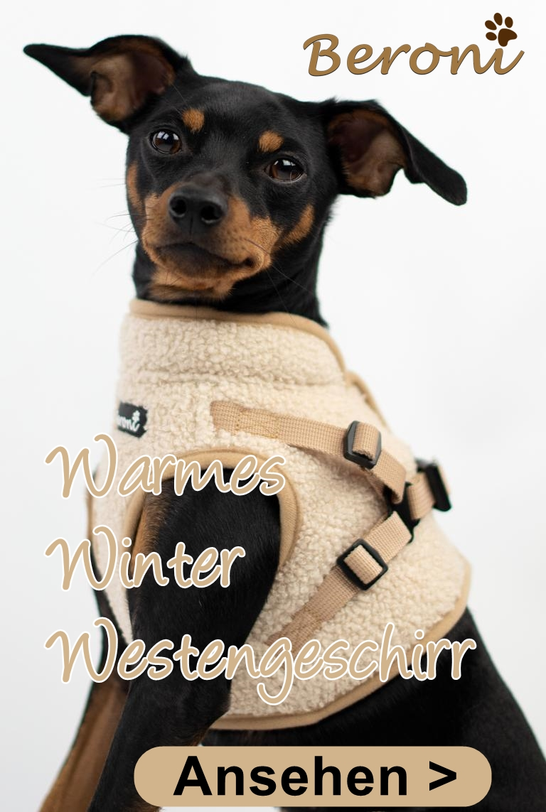 Hundegeschirr Westengeschirr Winter warm beige