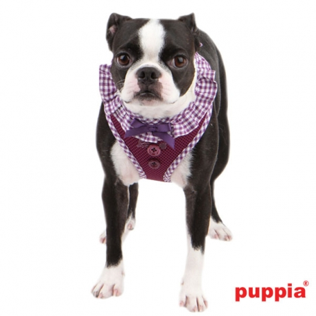 Puppia Vivien Hundegeschirr Boston Terrier