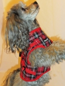 Jacket Harness Beroni english style rot